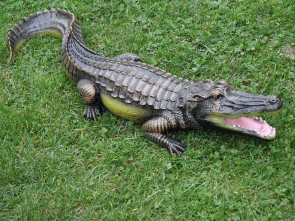 Krokodil Figur größe 69cm